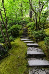 Zen Philosophy – ZenBegin, Live your Life the Zen Way