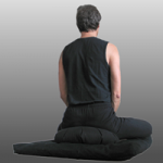 ZenBegin Zazen Meditation